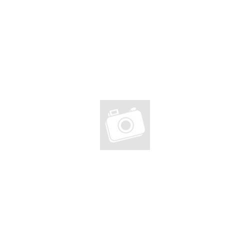 SOLO EVO Bluetoothos távvezérlő 4 kapu, 50 felhasználó